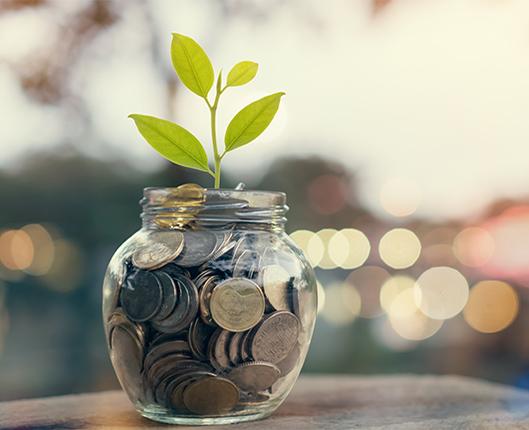 цени за счетоводни услуги